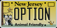 New Jersey Optional Graphic