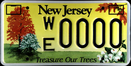 New Jersey - Treasure                   Our Trees Sample