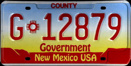 New Mexico - 1992 County Government